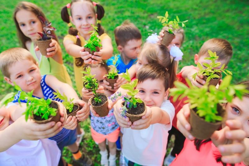 Materiales para jardinería en ferretería española en Albacete